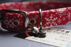 Christmas Collar!
